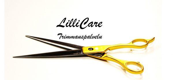 lillicare -logo nettisivuille